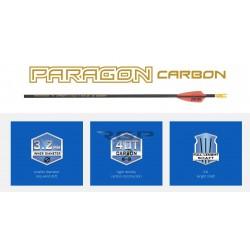 SKYLON ARROWS FRECCIA PARAGON IN CARBONIO
