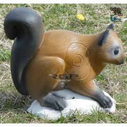 Running Squirrel 2D Target