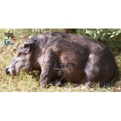 Boar Lying 2D Target